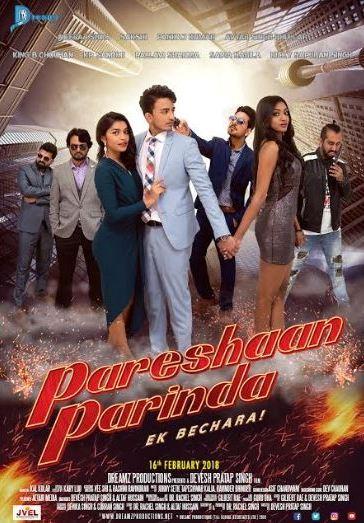 Pareshaan Parinda Poster
